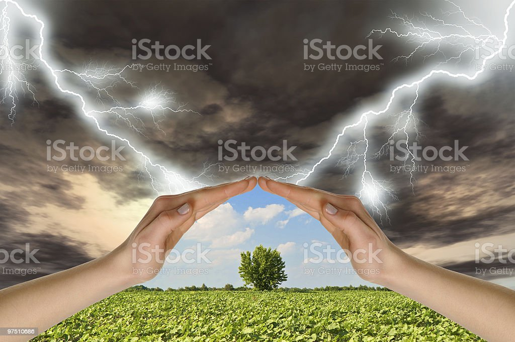 Two hands preserve a green tree against  thunder-storm stock photo