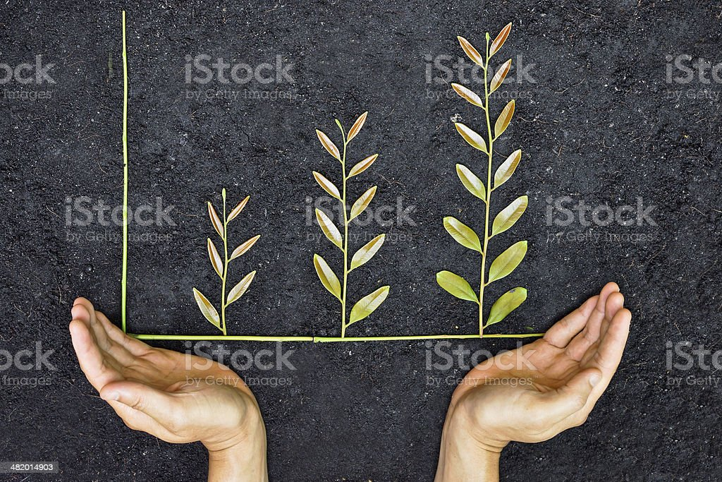 Two hands underneath green tree branch graph stock photo