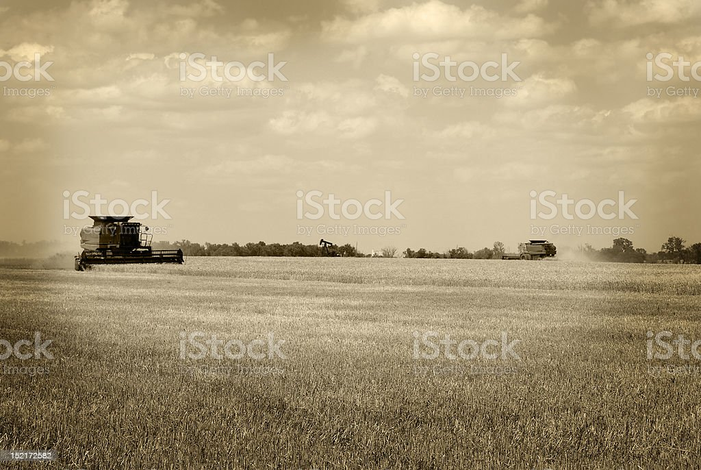 Two Harvesters in Sepia Tone royalty-free stock photo