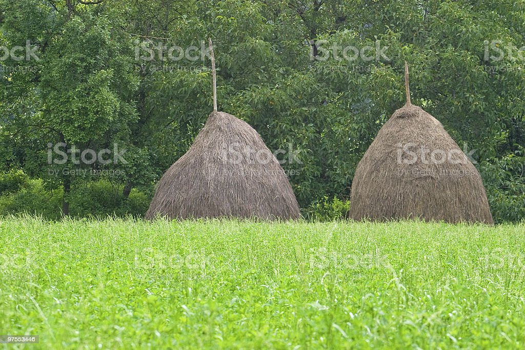 Two haystacks royalty-free stock photo