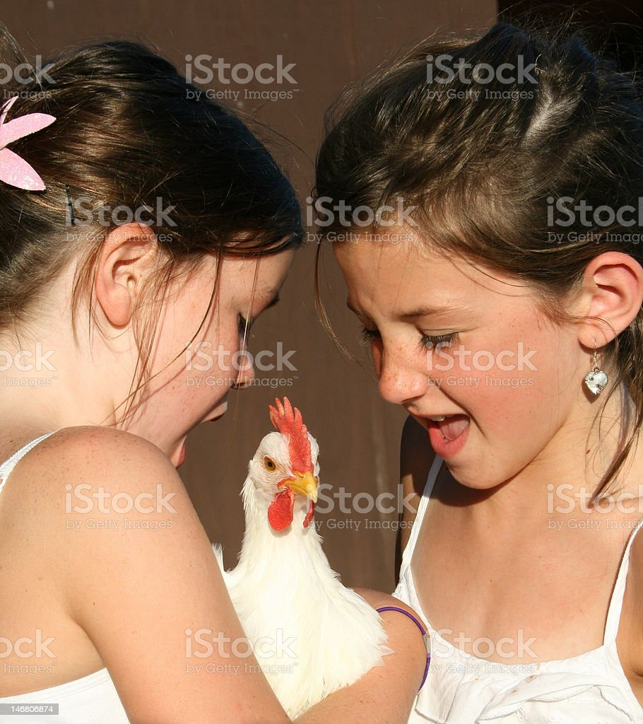 Two healthy girls with young chicken stock photo