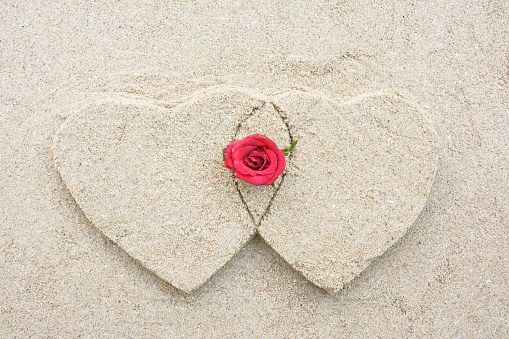 Two heart shape and red rose