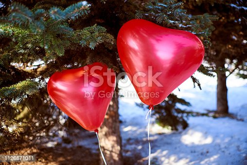 Two red heart-shaped balls near the needles of spruce. Valentine's Day