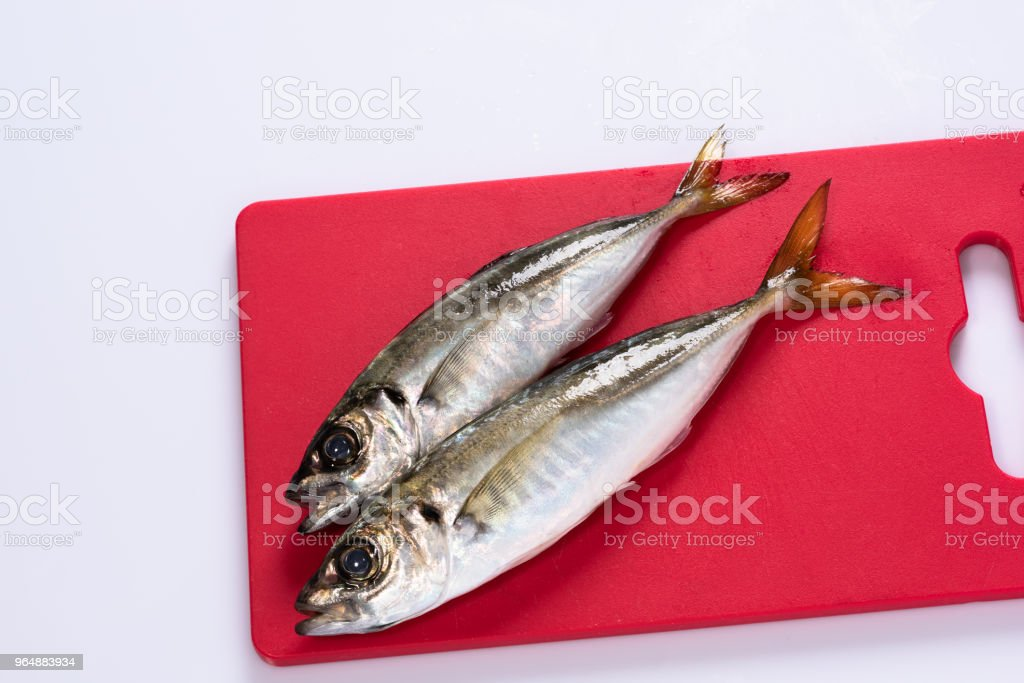 two horse mackerel on red kitchen board royalty-free stock photo