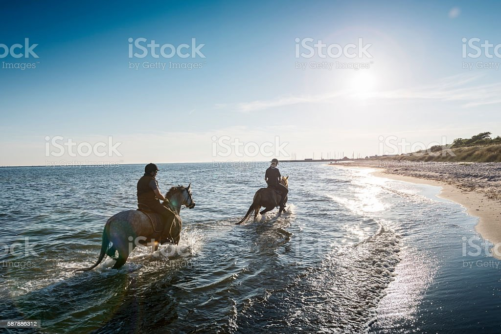 Two Horses Being Ridden on the Beach Into the Sunset. stock photo