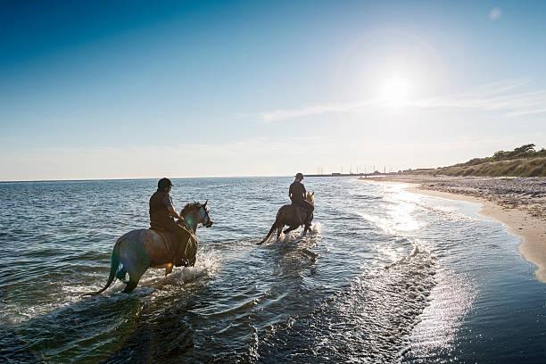 two horses being ridden on the beach into the sunset. - equitación fotografías e imágenes de stock