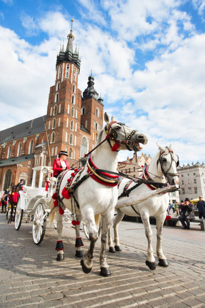 KRAKOW  - MAY 8: Two Horses In Old-fashioned Coach at Old Town Square during Cloudy Summer Day on  May 8, 2019 in Krakow, Poland stock photo