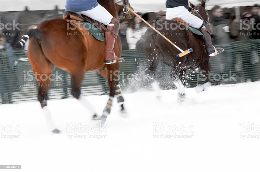Two horses running in a game of snow polo stock photo