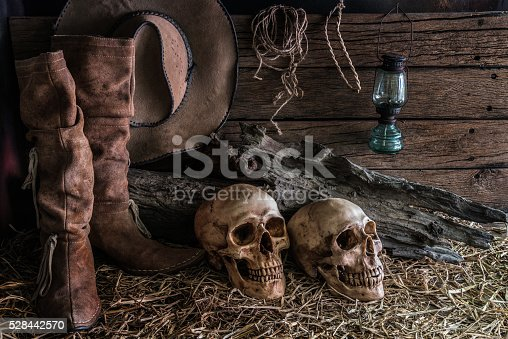 1176385551istockphoto Two human skulls in barn background 528442570
