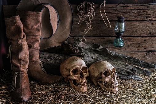 istock Two human skulls in barn background 528442570