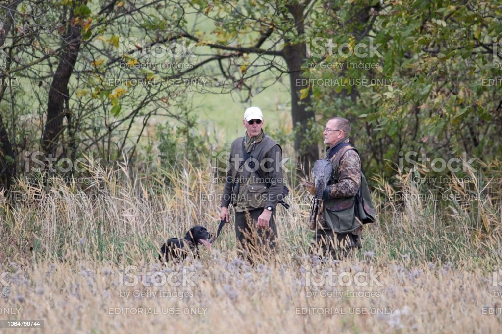 Two hunters with falcon and dog stock photo
