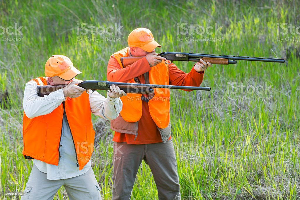 Two hunters with shotguns taking aim stock photo
