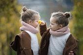 Two little toddler curly identical twin girls in brown coats smelling a flower outdoors in autumn with yellow grape's leaf in background
