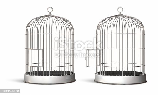 Bird cage (open and closed).