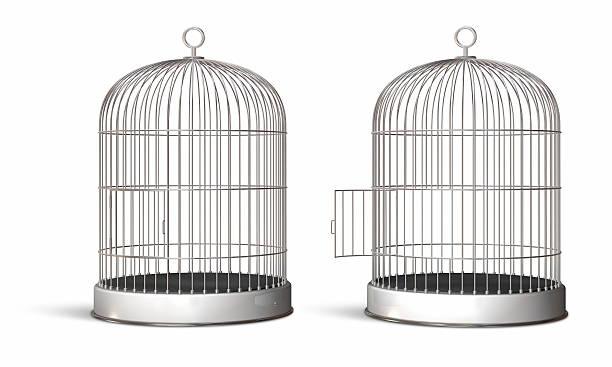 two illustrated oval bird cages, one with the door opened - kooi stockfoto's en -beelden
