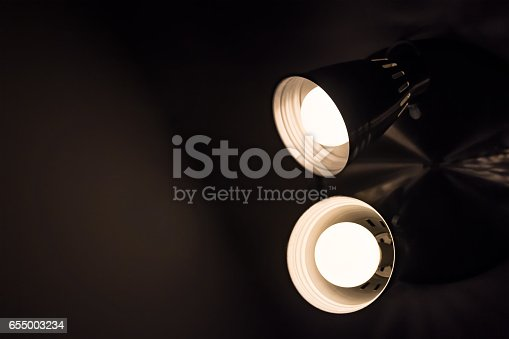 istock Two incadescent light bulbs in an industrial lamp. 655003234