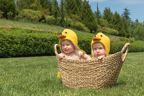 Two infant babies in Easter chicken costumes stock photo