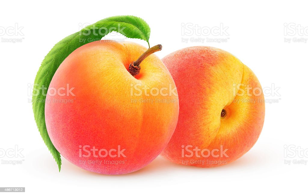 Two isolated peaches with clipping path stock photo