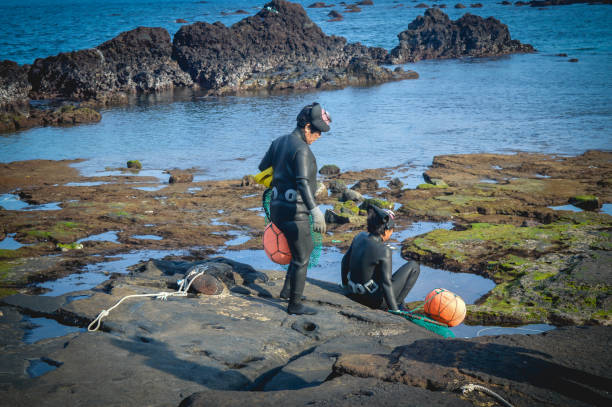 Two Jeju 'haenyeo' (women divers) set out to dive near Songsan Ilchulbong. Two Jeju women divers prepare to enter the water near Songsan Ilchulbong, in Seogwipo. seogwipo stock pictures, royalty-free photos & images