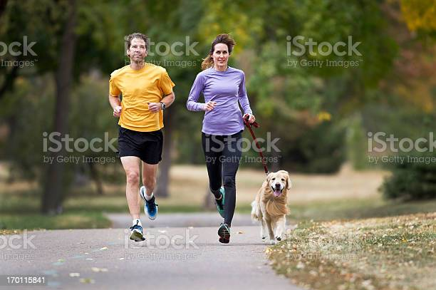 Two joggers and a golden retriever running on a paved trail picture id170115841?b=1&k=6&m=170115841&s=612x612&h=j9l kxe75e t w uvtec03 gnkdz4ascos2aewp5jqk=