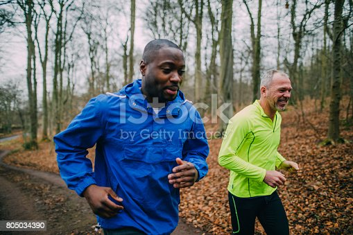 istock Two Joggers Training for a Marathon 805034390