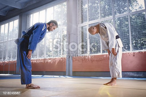 istock Two judo fighters greeting each other in a bow before practicing martial arts in a fight club 1018245582