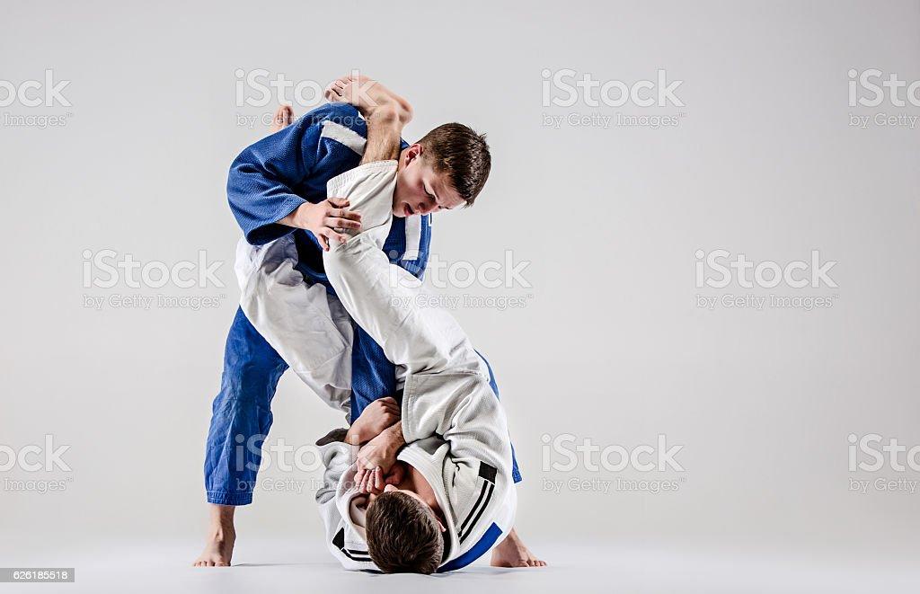 Two judokas fighters fighting men stock photo