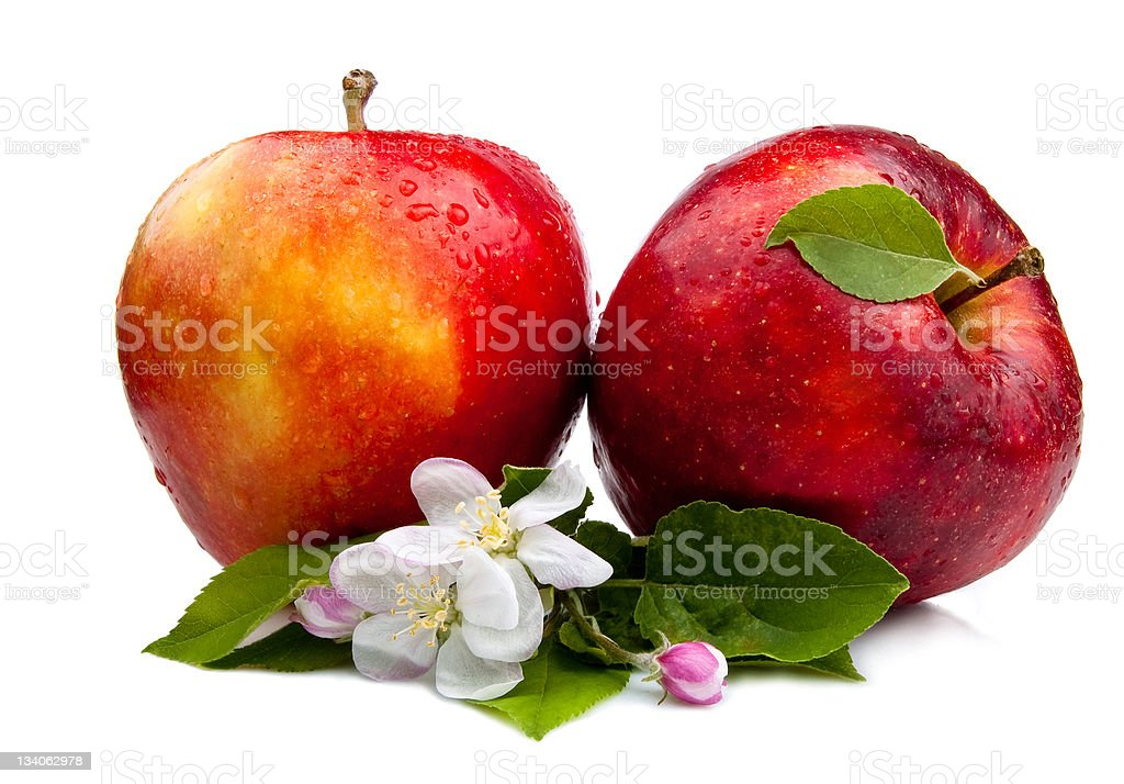 Two Juicy Red Apple with flowers and water droplets Isolated royalty-free stock photo