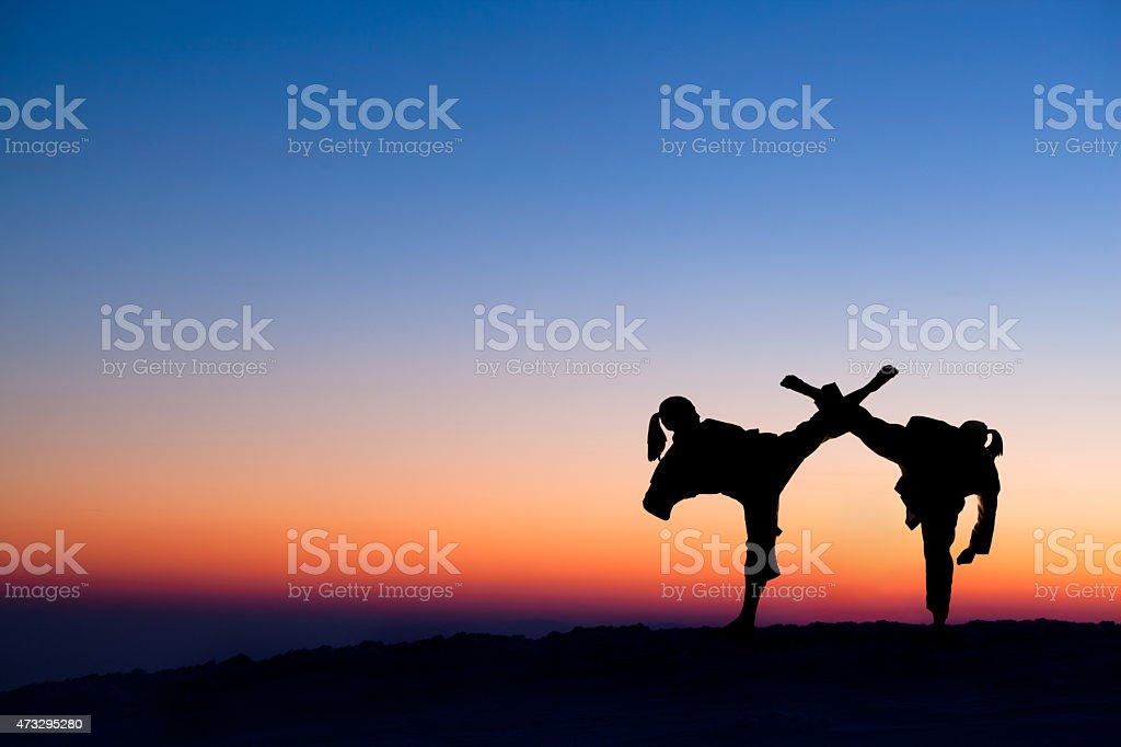 Two karate fighter silhouettes at nightly sky stock photo