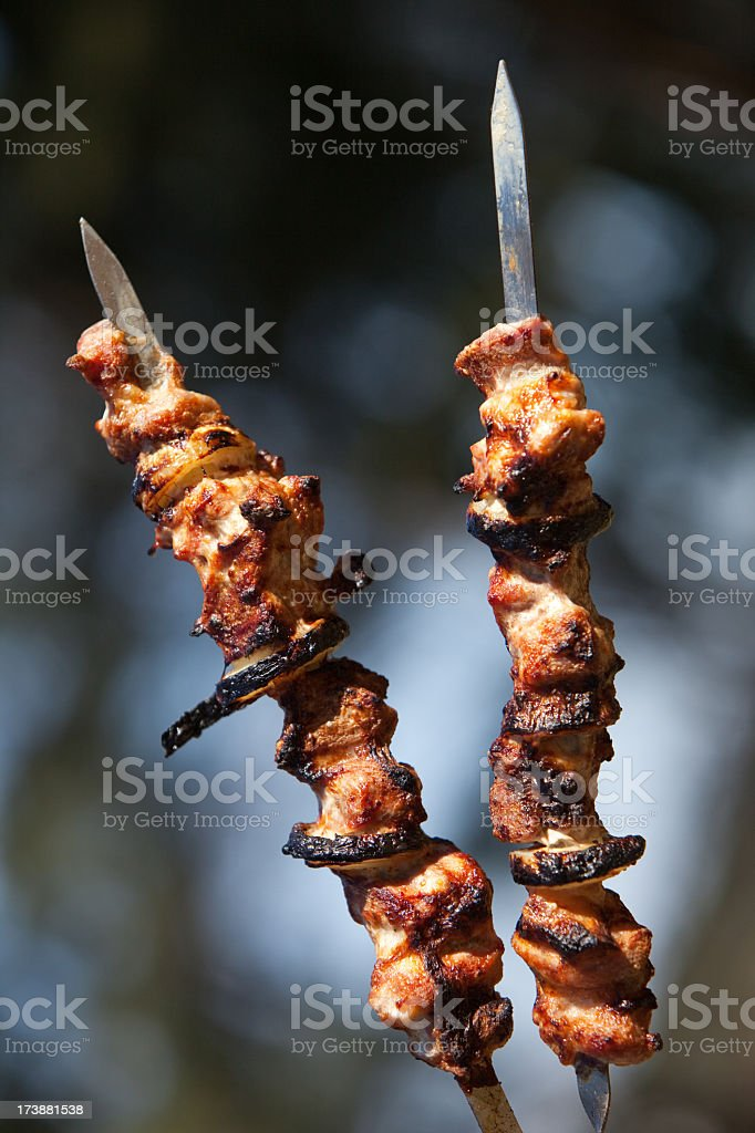 two kebabs on the skewers royalty-free stock photo