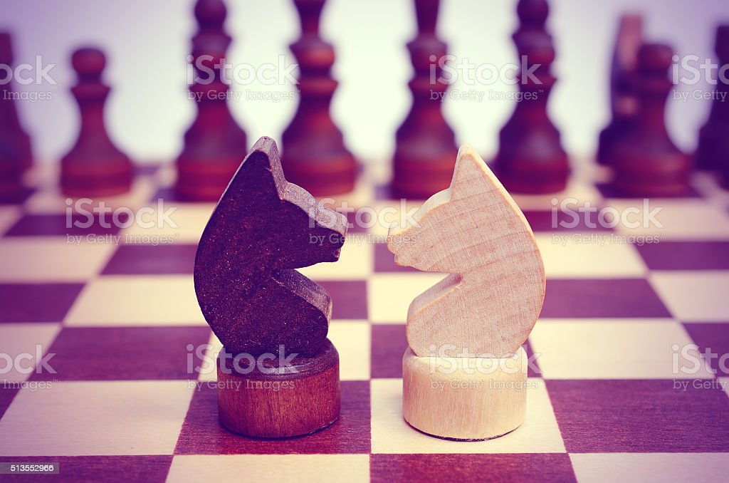 Two knight on a chessboard. Confrontation. stock photo