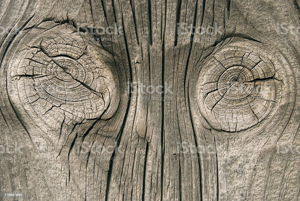 Two knot and rings in natural wood royalty-free stock photo