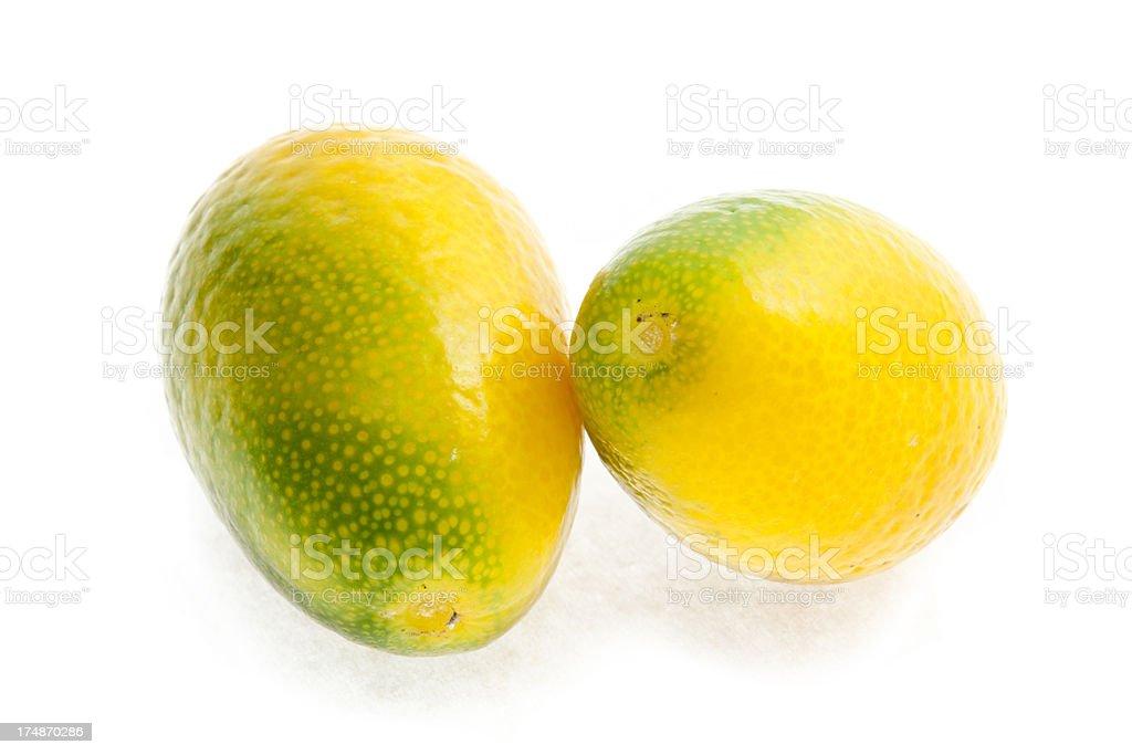 Two Kumquats Isolated On White royalty-free stock photo