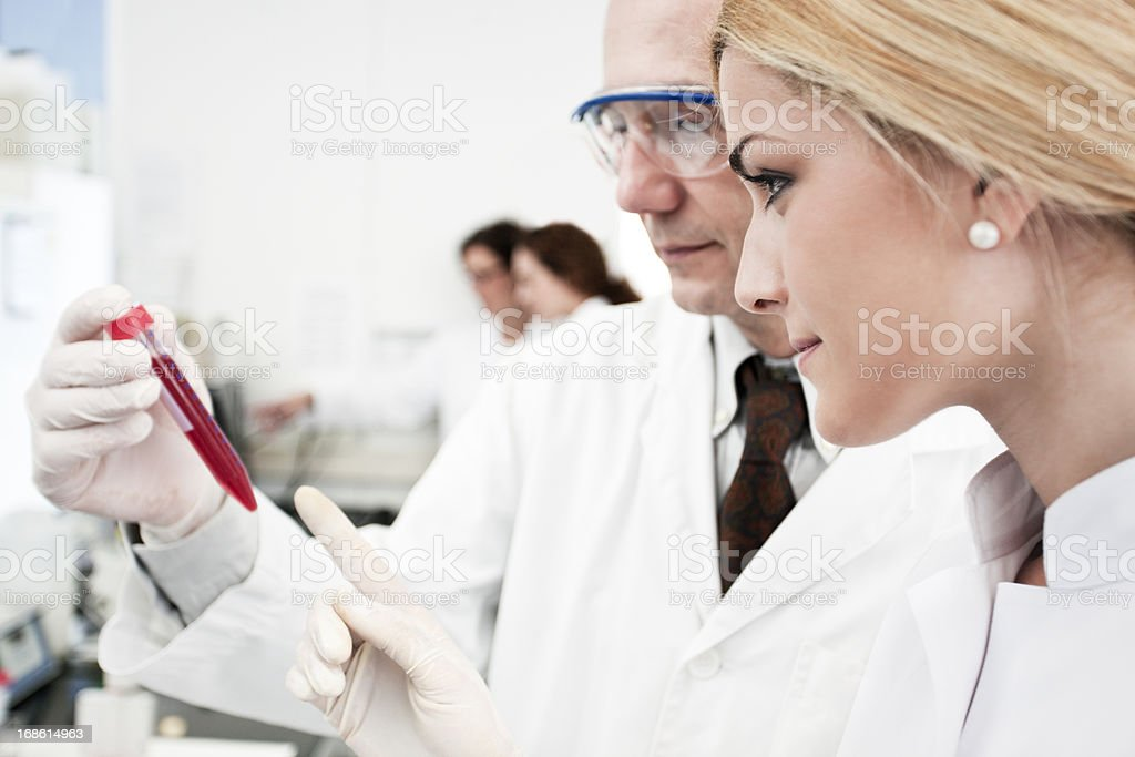 Two laboratory technicians at work, other scientist on background royalty-free stock photo