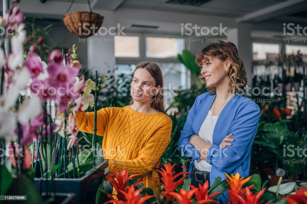 Two women at the flower shop, looking at plants.