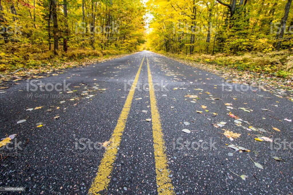 Foto De Dois Lane Open Road Na Turne De Outono Cor Em Michigan E Mais Fotos De Stock De Amarelo Istock