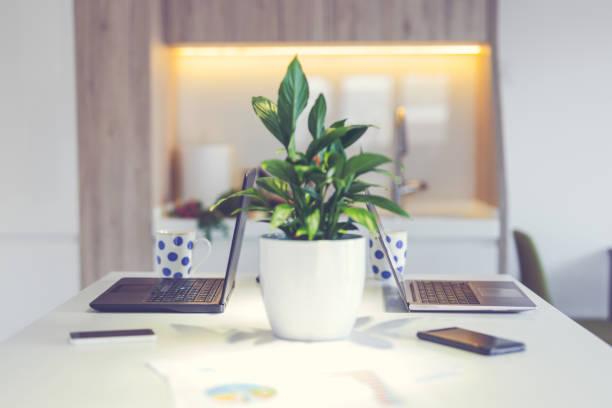 zwei laptops in küche - küche deko blog stock-fotos und bilder
