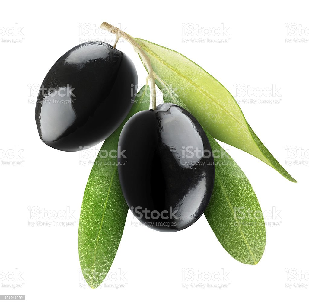 Two large ripe black olives with leaves on white background stock photo