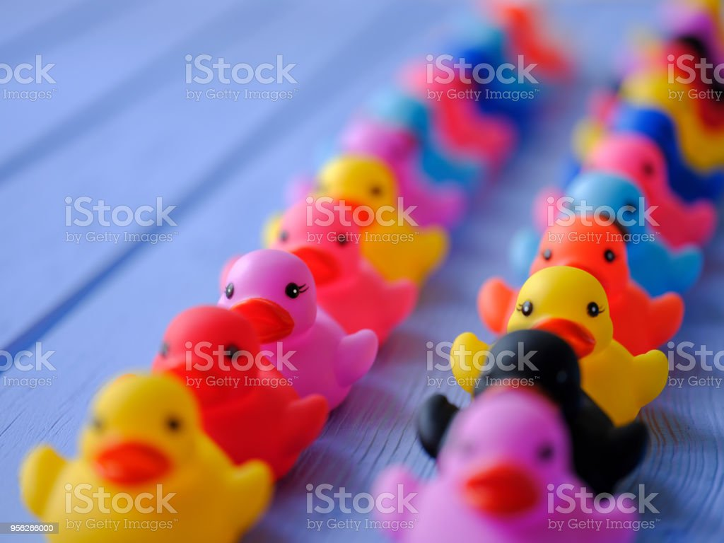 Two lines of multi-color rubber ducks, moving in an orderly line, set on a blue wooden grained table. stock photo