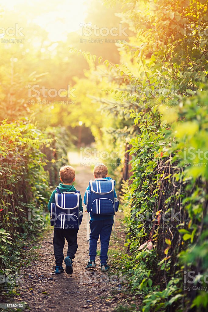 Two little boys going back to school stock photo