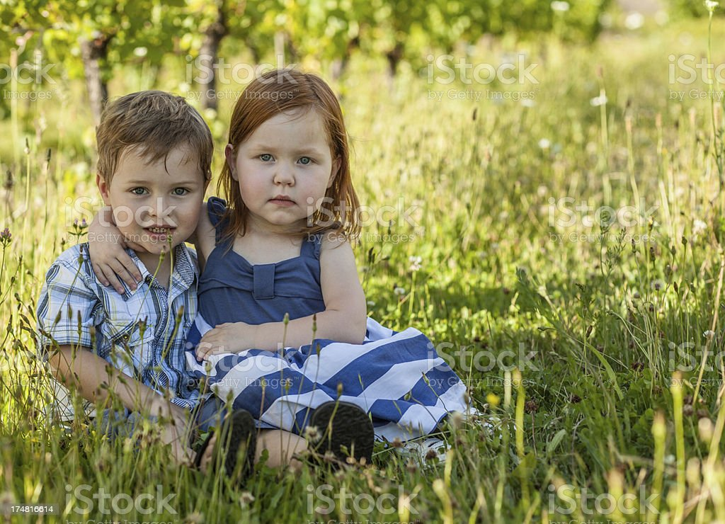 Two Little Children Sitting side-by-side in Summer Field royalty-free stock photo
