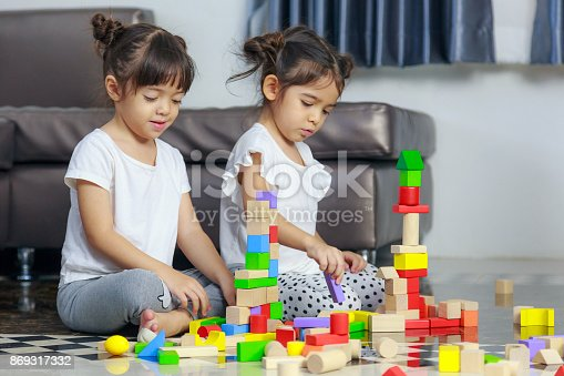 470874196istockphoto Two little girl play with wooden toys blocks on the floor, building towers at home 869317332