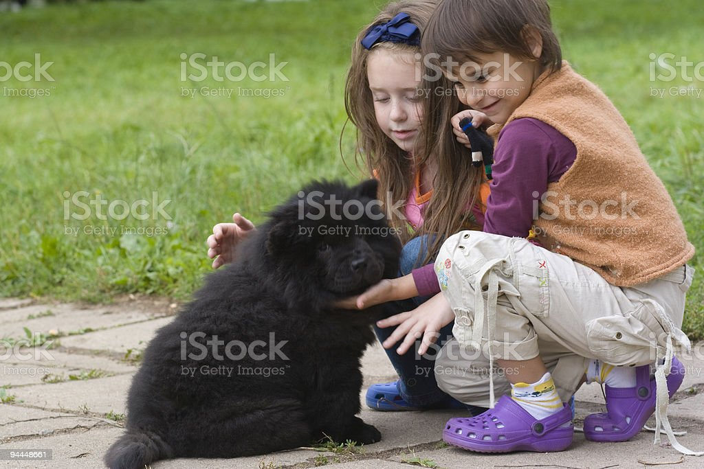 Two little girls and a dog outside royalty-free stock photo