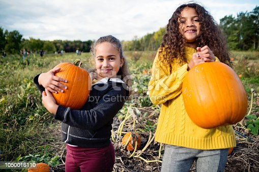 Two adorable mixed-race little girls of elementary age picking pumpkins for Halloween. Both are wearing warm clothes on a sunny autumn day. Horizontal three quarter length outdoors shot with copy space.