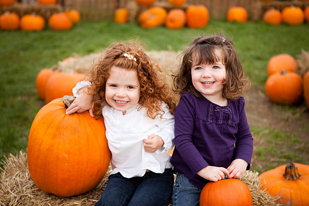 Two Little Girls Smiling in a Pumpkin Patch stock photo