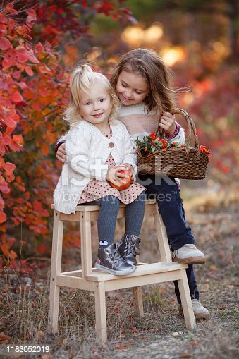 istock Two little girls walk outdoors in the Park during the Golden autumn 1183052019