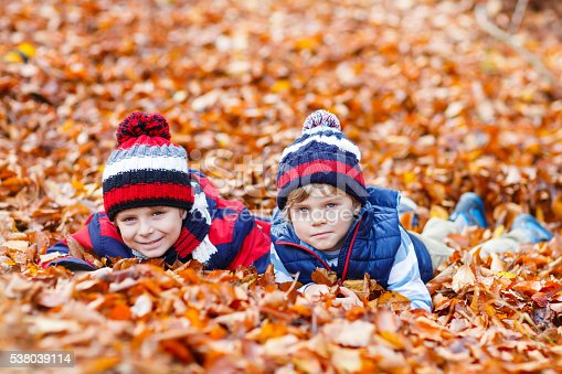istock Two little kid boys lying in autumn leaves, in park. 538039114