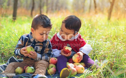istock two little kids eating apples in the park 492459588