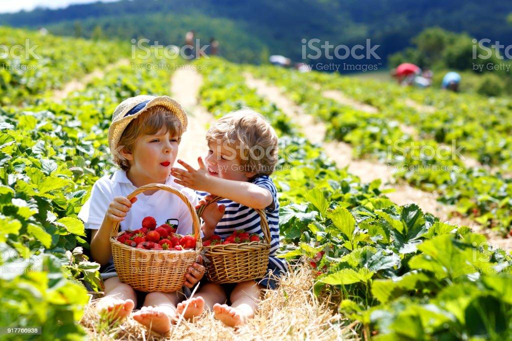 Zwei kleine Schwester Jungen auf rote farm im Sommer – Foto