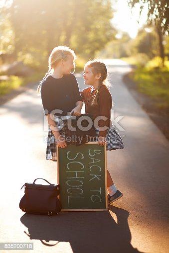 istock Two little sisters school kids happy back to school 835200718
